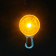 CLIP LED POUR VOTRE TECKEL